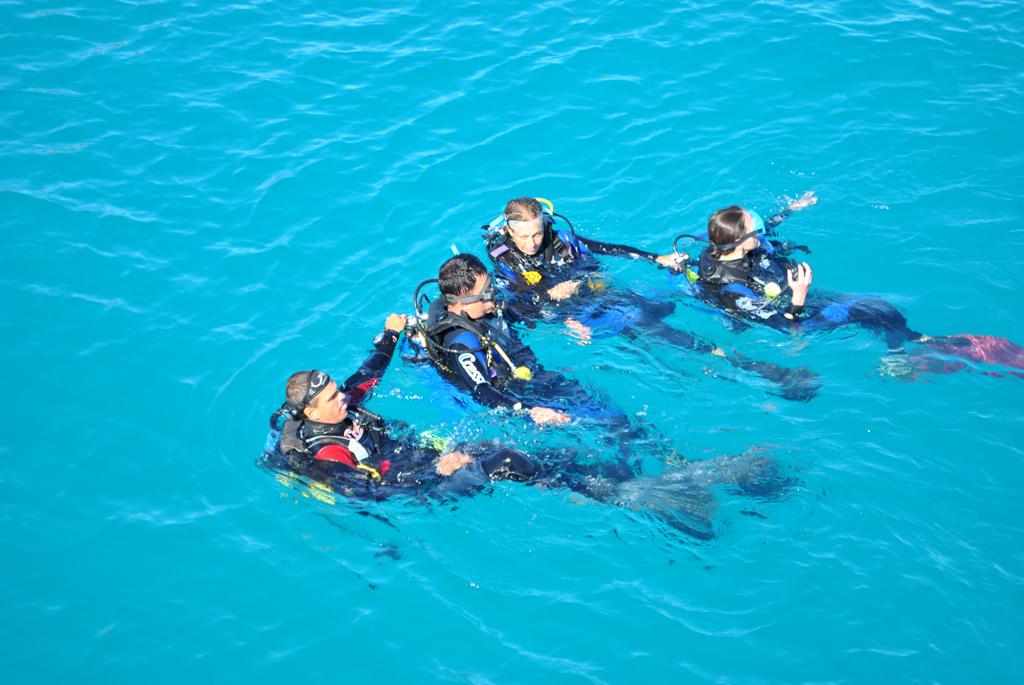 thumb-venha-fazer-cursos-de-mergulho-na-onda-azul