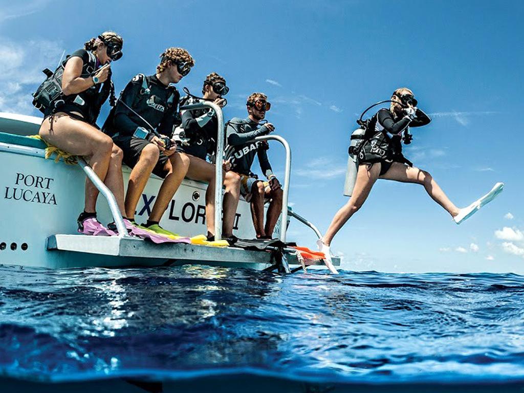 imagem-destacada-onda-azul-abre-turmas-para-sete-cursos-de-mergulho