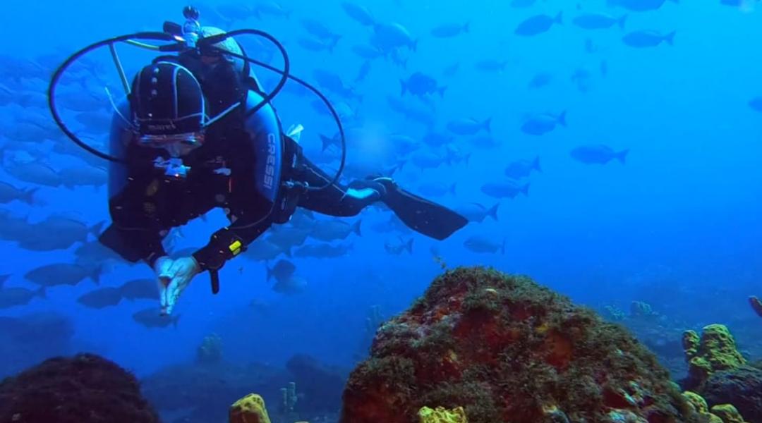 imagem-destacada-conheca-mais-sobre-a-oxigenacao-turismo-parceira-da-onda-azul
